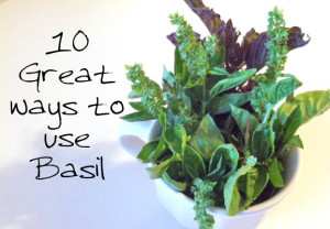 10-great-ways-to-use-Basil-leaf-for-health-and-cooking