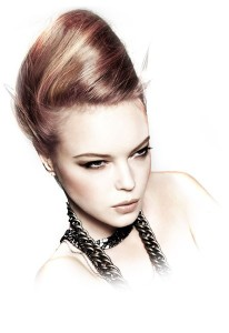 hair care1-e1354119597459
